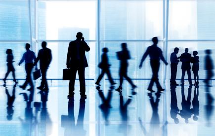 Organization Developmental Consulting